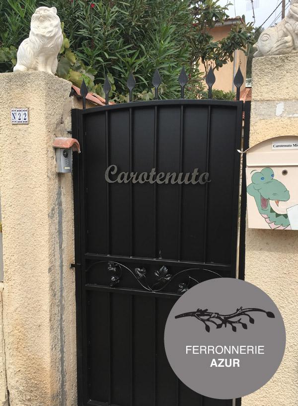 Portail et portillon en fer décor vignes à Grasse occasion